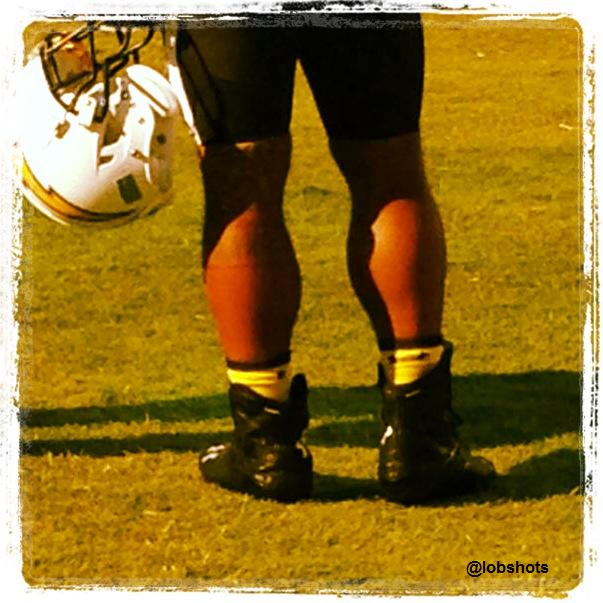 ryan-mathews-calves