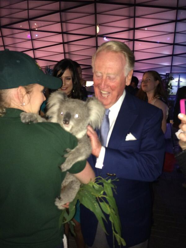 vin-scully-koala