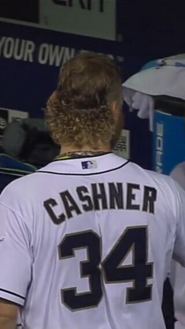 cash-flow-cashner-lobshots